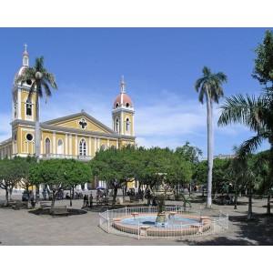 Марагоджип Никарагуа кофе № 1