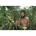 Кофе Папуа Новая Гвинея, 0,5 кг