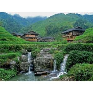 Чай зеленый китайский Сенча, 0,5 кг