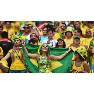 Бразилия Желтый Бурбон, 0,5 кг